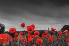 Memoria i damnatio memoriae - Nasilje nad pamćenjem