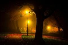 Jesenja bajka